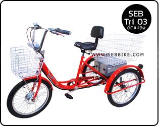 จักรยาน 3 ล้อไฟฟ้า SEB-TRI02 (ดัดแปลง)